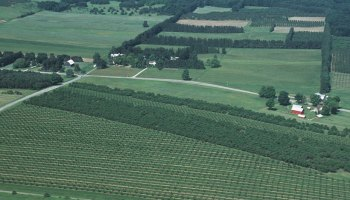 An aerial view of an agricultural landscape
