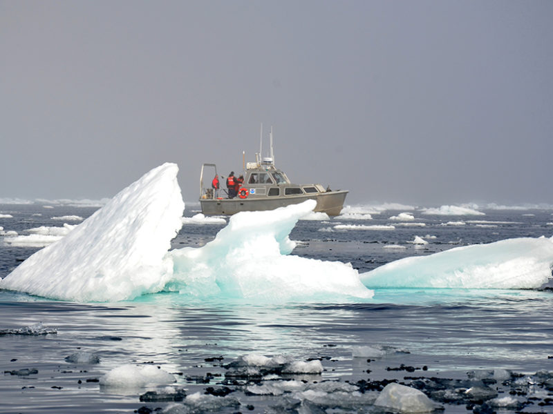 A research vessel floats among the ice in the Arctic Ocean