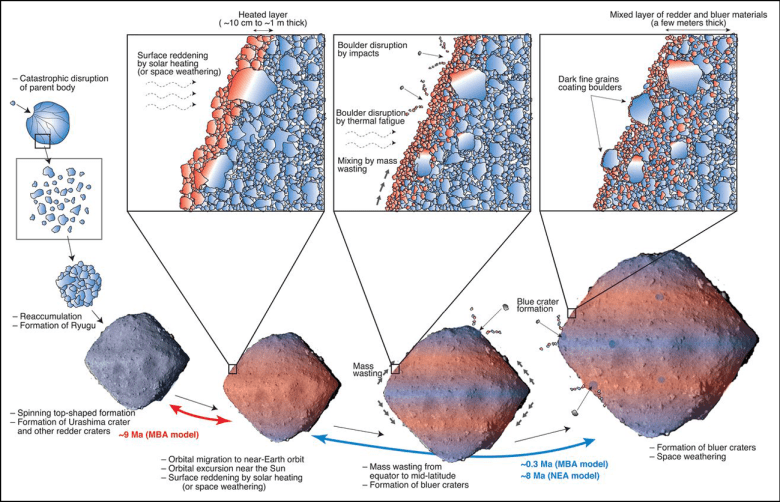 Diagram outlining the formation of the asteroid Ryugu