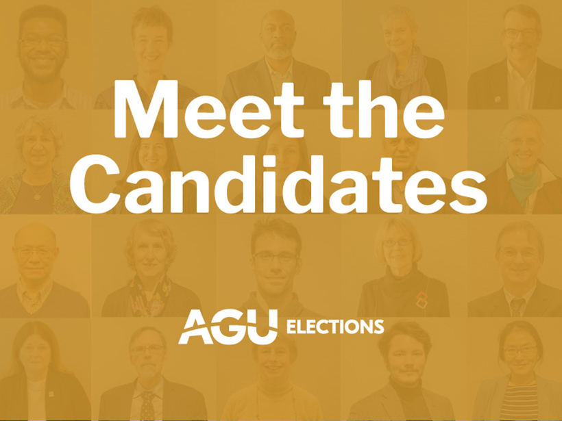 """A yellow graphic that says """"Meet the Candidates"""""""