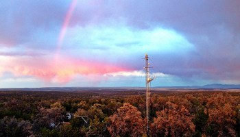 An AmeriFlux instrument tower rises above treetops in a New Mexico piñon-juniper forest