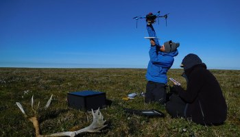 Two scientists on the flat green tundra—one holds a drone aloft, and one writes in a notebook