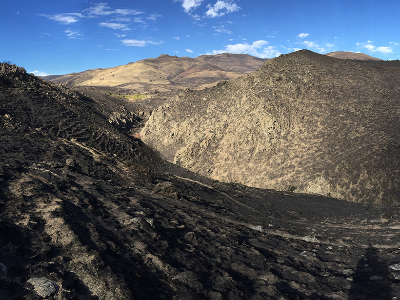 A hilly landscape in the Reynolds Creek Critical Zone Observatory, with charred soil in the foreground.