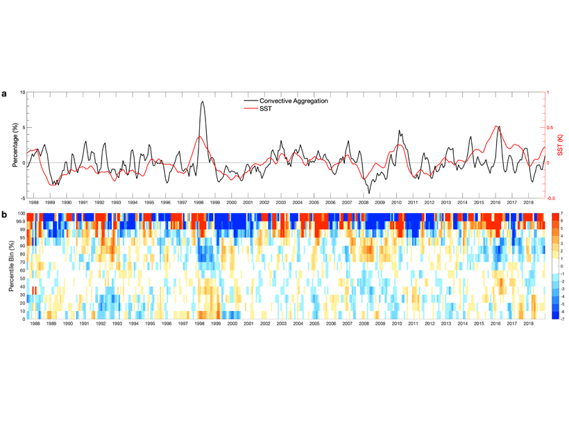 Sea surface temperature and precipitation anomalies as a function of time
