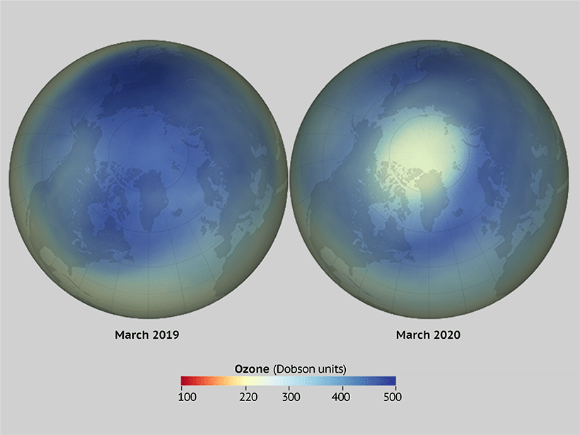 Figure comparing stratospheric ozone over the Arctic in March 2019 compared with March 2020