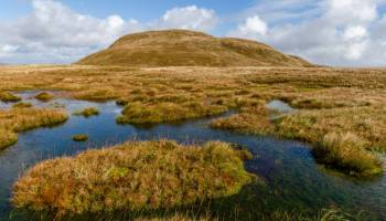 Doune Hill towers over a peat bog in Scotland.