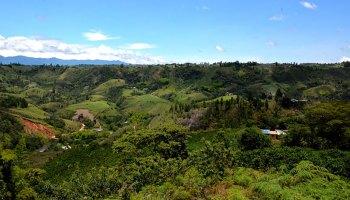 Verdant, hilly vista of Los Cerrillos, Cauca, Colombia