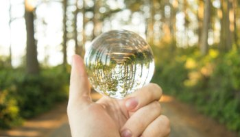 A hand holding a glass sphere through which a forest is visible