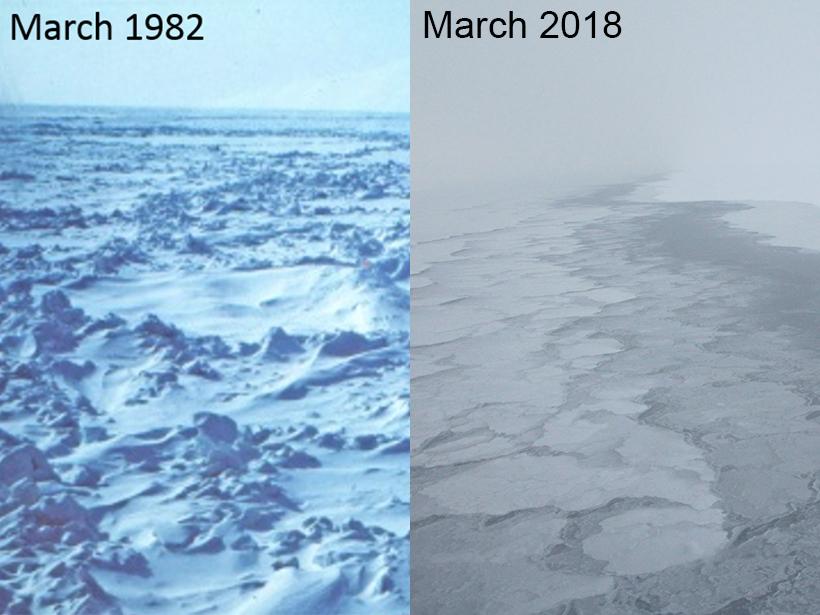 Sea ice in Alaska in 1982 compared to 2018
