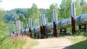 The Trans-Alaska Pipeline stretches through a green, rural landscape.