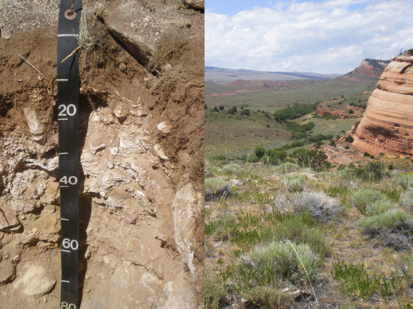 A soil profile from the Wind River Range