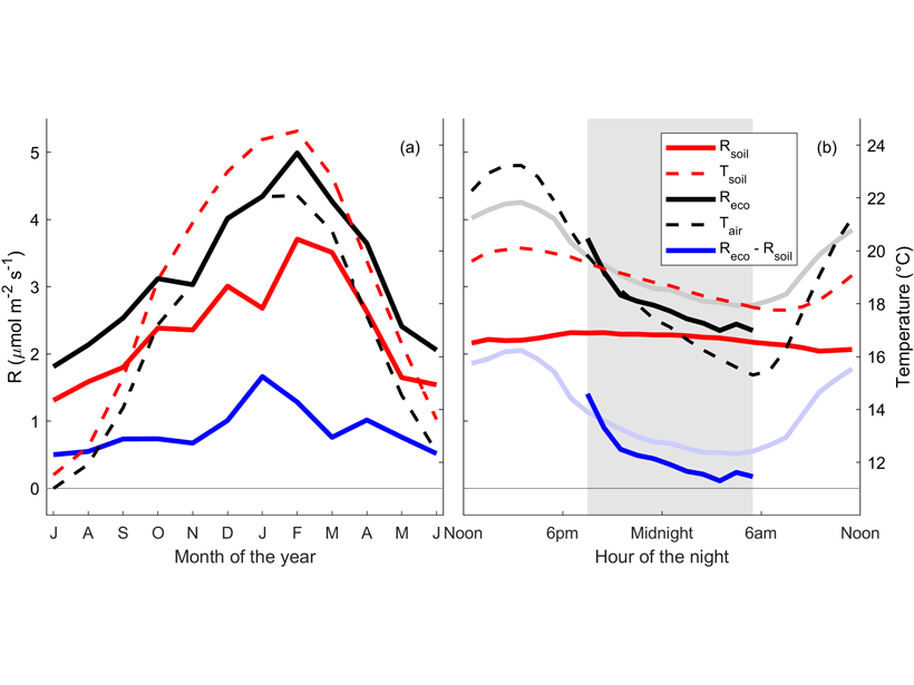 Two plots showing measurements of soil and ecosystem metabolism