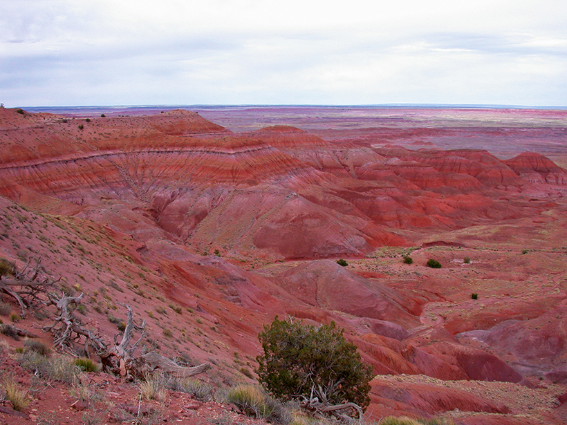 Red rocks of the Chinle Formation at Petrified Forest National Park