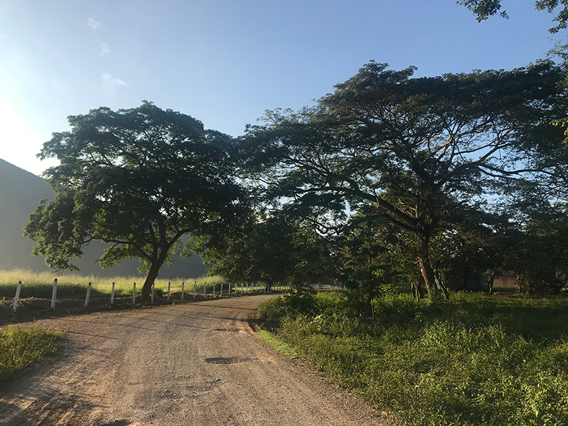 Sunrise over an unpaved road near Apulo, Colombia