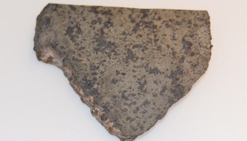 Slice of a meteorite determined to have originated on Mars on the basis of its minerology and gases trapped in the rock.