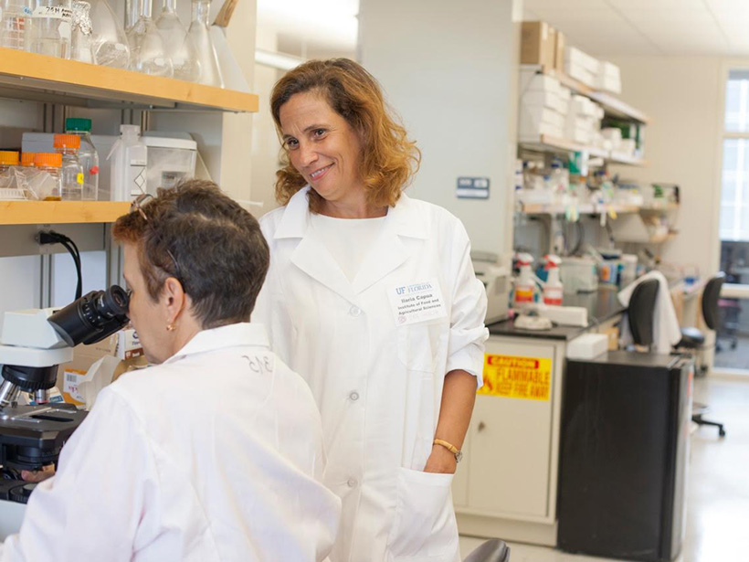Ilaria Capua is a professor of agriculture and life sciences at the University of Florida.