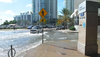 Photo of the intersection of Brickell Bay Drive and 12th Street in downtown Miami, which is flooded because of high tides