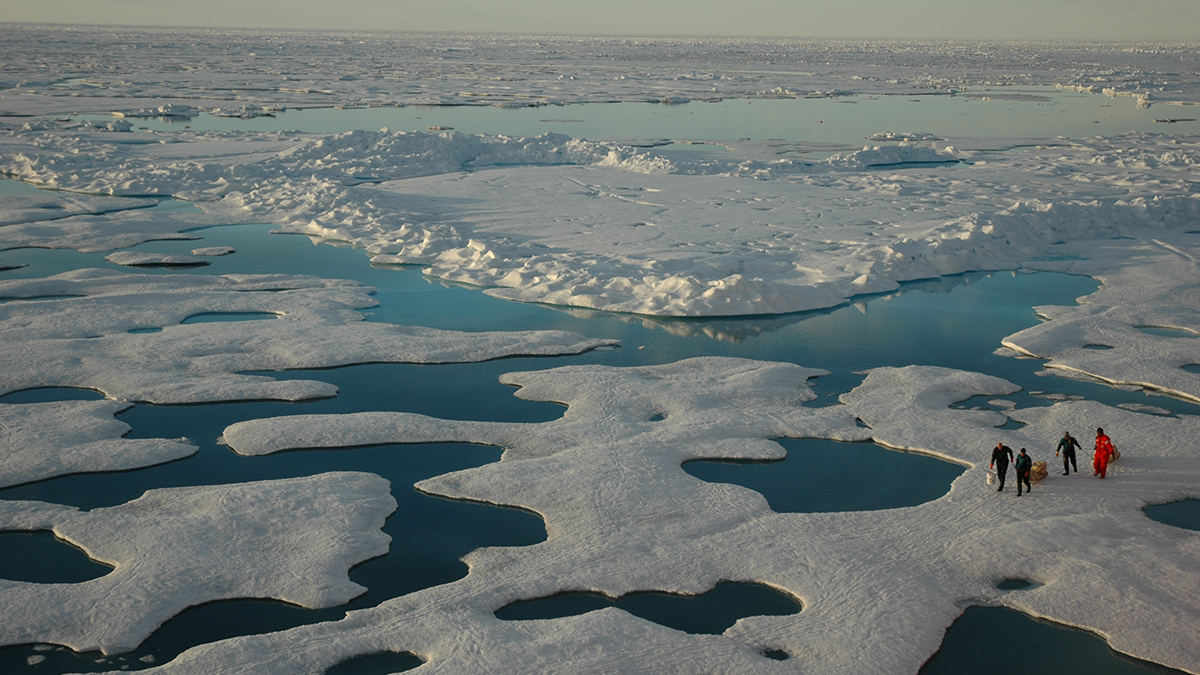 An icy Arctic vista is seen from a slight elevation. The landscape contains patches of white ice and randomly positioned pools of meltwater. Four scientists, small and seen from a distance, stand on the ice on the right side of the image.