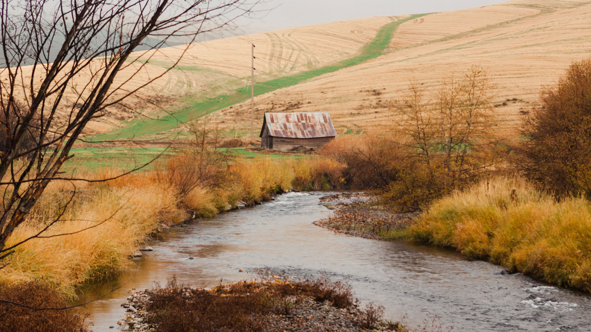 A stream in autumn with trees and vegetation along both banks, with an old barn and agricultural fields in the background.