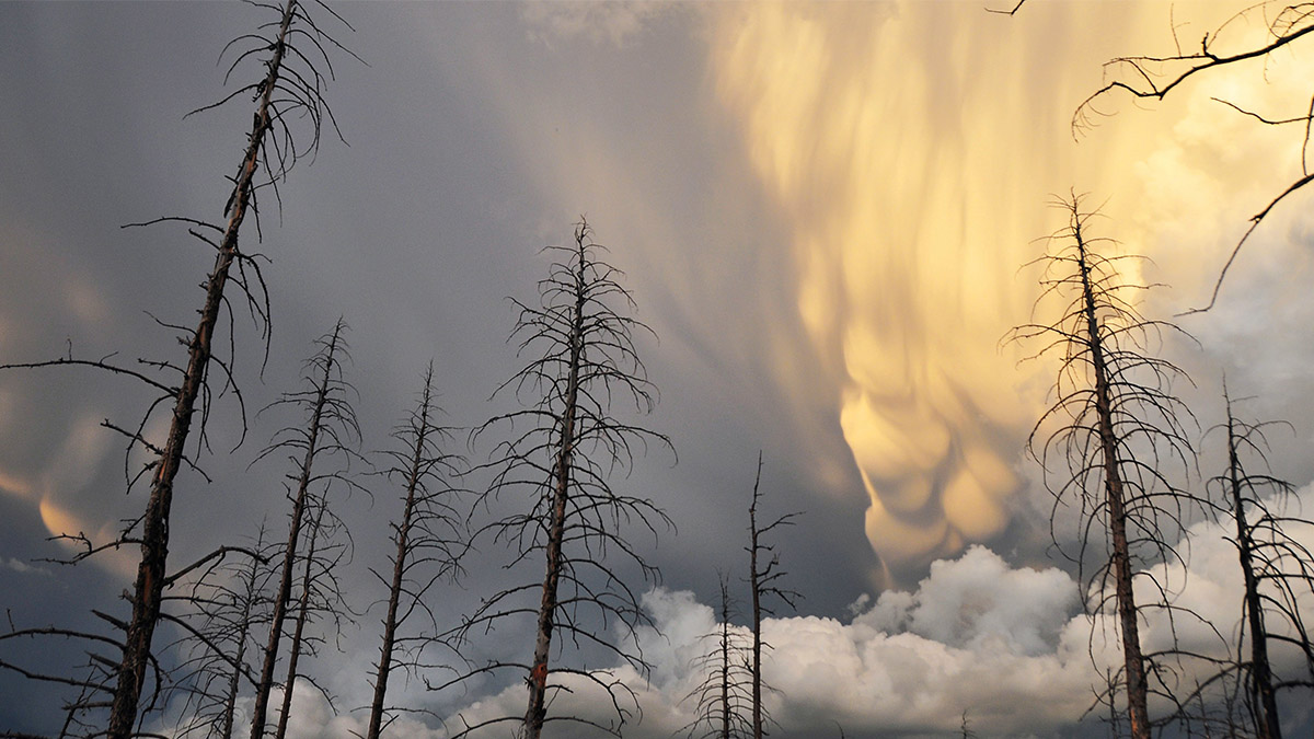 Mammatus clouds form as two storm systems come together over the Colorado Rocky Mountains.