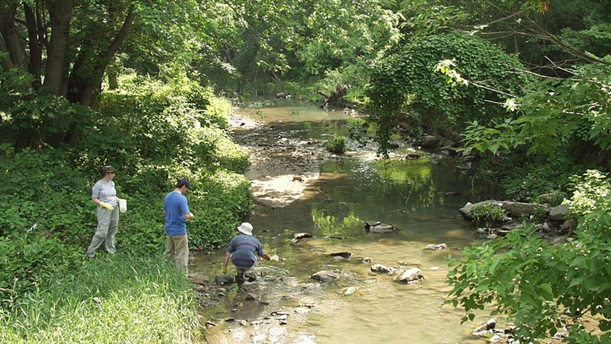 Water samples collected from Gwynns Falls stream in Baltimore
