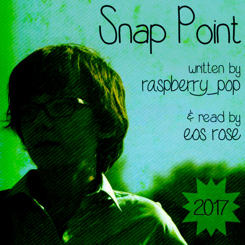 Cover image for Snap Point