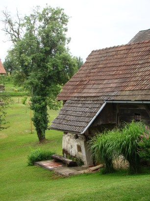travel slovenia big berry bela krajina 8