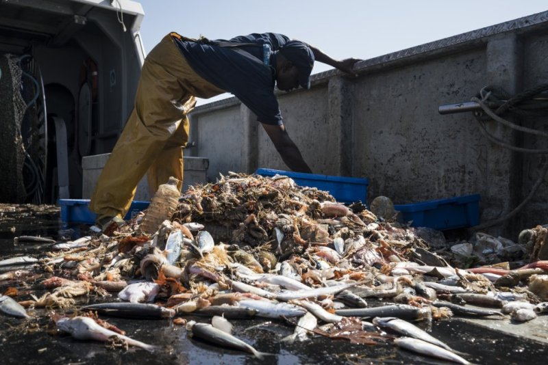 La Cofradía de Pescadores de Barcelona se comprometió en 2015 con las administraciones a devolver a puerto los residuos que caigan en sus redes.