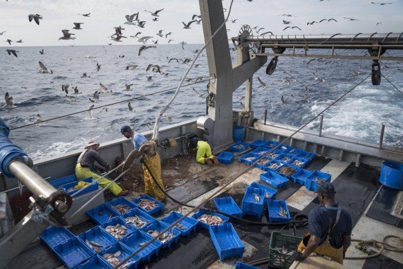 Este diario acompañó al 'Bona Mar 2' en su jornada de pesca del 20 de septiembre: volvieron a puerto con cerca de 350 kilos de pescado y 20 kilos de basura.