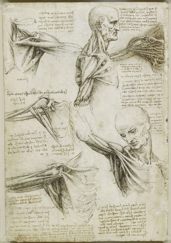 Leonardo Da Vinci | Cajón de Sastre