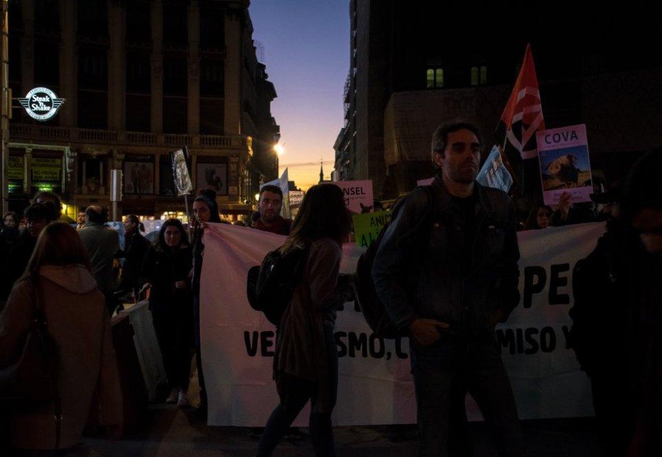 El colectivo Noviembre Antiespecista (Conformado por la asociación Las Carolas ACAF con el apoyo de otras organizaciones animalistas locales), nace este año para coger el relevo a la Asamblea Antiespecista de Madrid, que se retiraría tras organizar las marchas de 2016 y 2017. El origen de estas movilizaciones data de 2015, cuando entre 100 y 200 personas del colectivo anarquista vegano Straight Edge Madrid, llevaron a cabo la primera manifestación. Hoy sus asistentes ya se cuentan por miles. Además de estas movilizaciones, Noviembre Antiespecista aboga por la concienciación a través de otras acciones, como charlas o difusión de documentales. La próxima semana, desde el miércoles, proyectarán en Matadero el documental 'Dominion' durante cuatro días, que se estrenará este sábado en el Local Anarquista Magdalena.