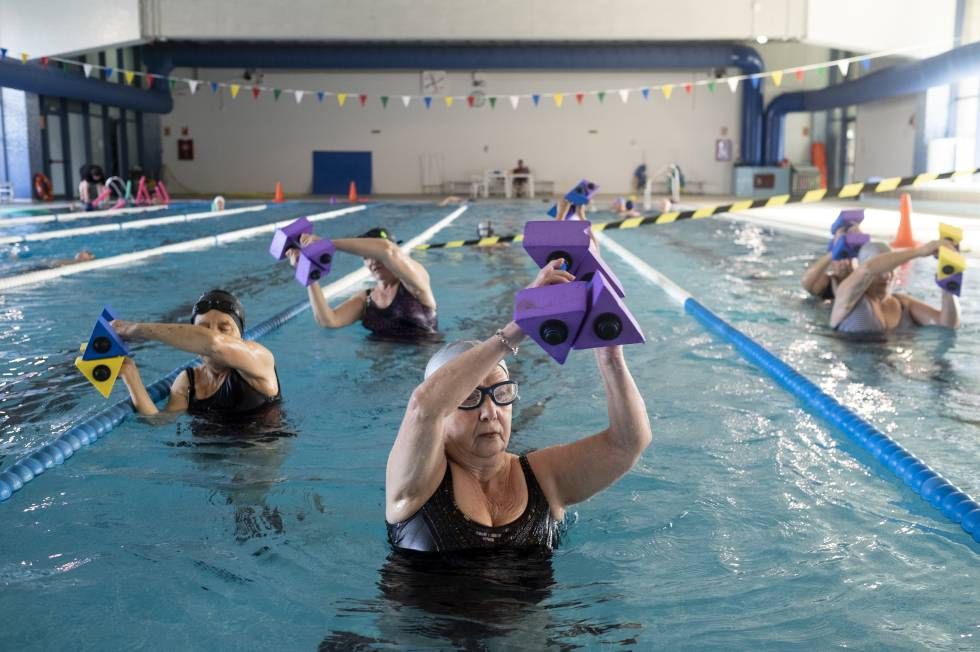 Can physical activity regenerate neurons?   Science