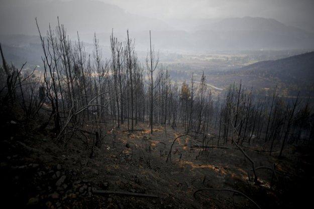 Una veintena de provincias argentinas han sido afectadas por incendios recurrentes desde 2020, propiciados en gran parte por la sequía.