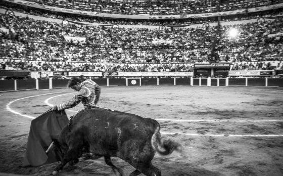 José Tomás toreará en la plaza Monumental de México
