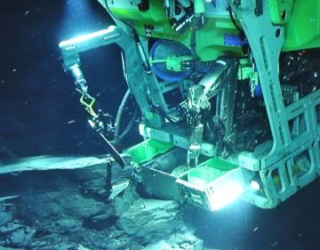 Robot submarino extrayendo muestras biológicas y de sedimentos del yacimiento.