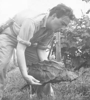 Charles Lagus sostiene una tortuga matamata.