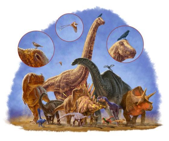 El abanico de tamaños de los dinosaurios era enorme