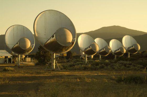 Antenas del telescopio Allen