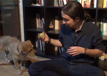 El perro de Pablo Iglesias está harto de su dueño y de Podemos