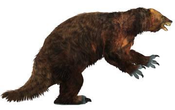 Perezosos gigantes terrestres como este Megatherium del tamaño de un elefante desaparecieron poco después de la llegada de los humanos al Nuevo Mundo.