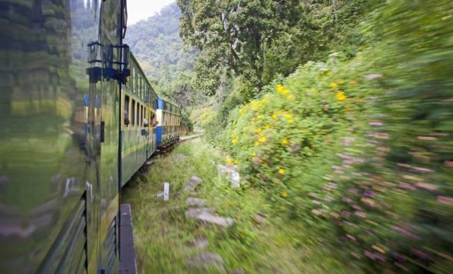 El tren cremallera de las montañas Nilgiri, en India.