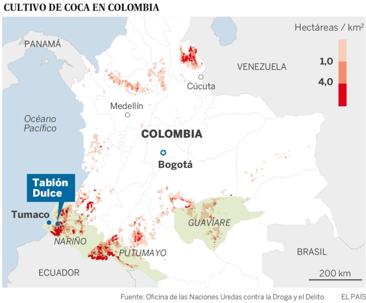 La coca, el gran negocio a erradicar en Colombia