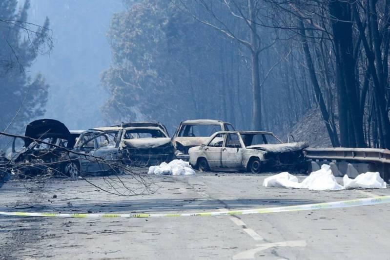 Image Result For Incendio En Portugal Hoy
