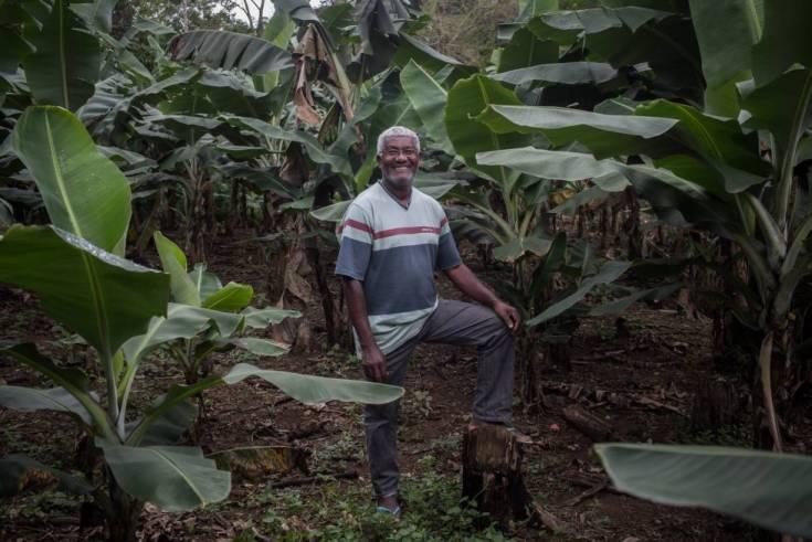 Ditão en su plantación de plátanos en el quilombo de Ivaporunduva, al lado del Eldorado