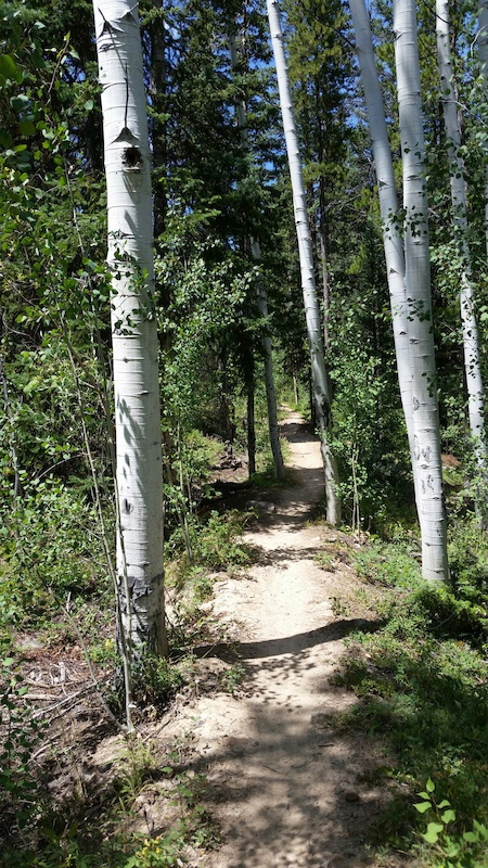 Mountain Trails Colorado Breckenridge Bike