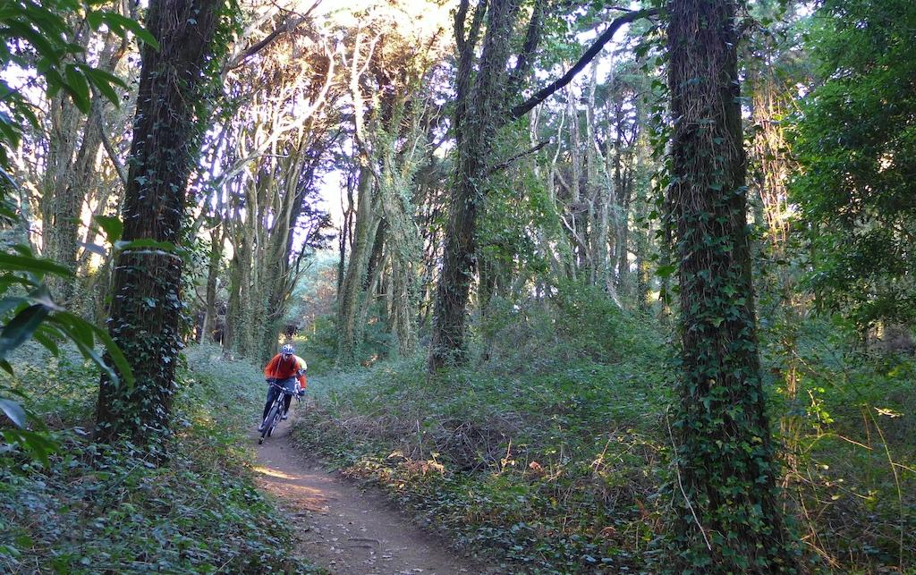 Sintra trails