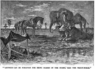 servants troop-horse