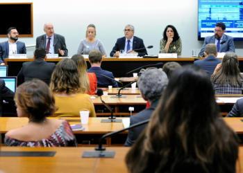 Audiência Pública sobre a PL 6.407/13 - Lei do Gás. Foto: Cleia Viana/Câmara dos Deputados