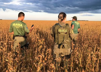 Agentes do Ibama em operação / Foto: divulgação Ibama