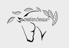 Créations éthologiques pour équidés !! LIEN: https://www.instagram.com/creation.chevaux/